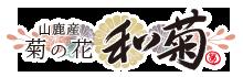 山鹿産菊の花【和菊】